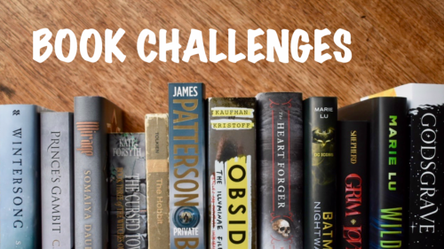 Book Challenges Banner with grey book spines